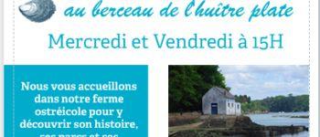 Visite guidée des Huîtrières du Château de Bélon Riec-sur-Bélon