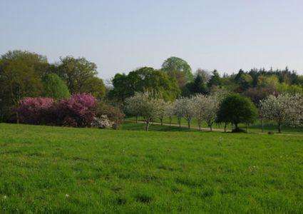 Parc de Boutiguéry - Copie DJ 040418