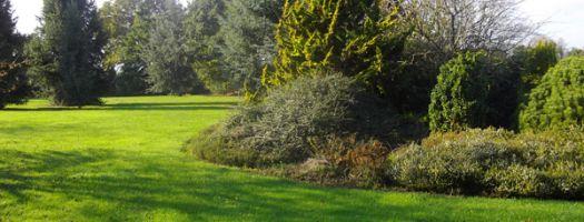 jardin botanique des montagnes noires - Jardin Paysager