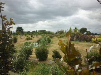 Découverte de l\Arboparc, Arboretum de Guipry-Messac Guipry-Messac