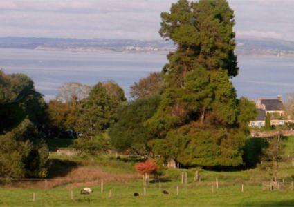 Le site naturel protégé des Plomarch