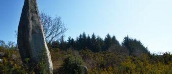 Menhir du Quélennec