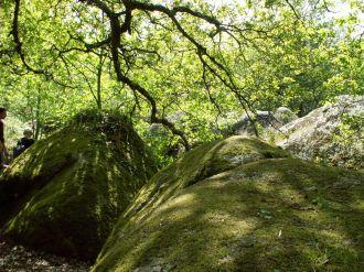 Visite guidée de la Vallée des Traouïero Trégastel