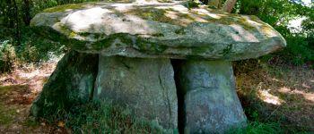 Dolmen et Menhir de Lesaff