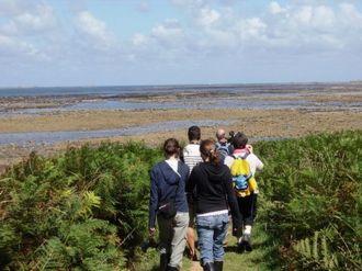 Randonnée avec les Randonneurs de la Presqu\île - Circuit des phares Pleubian Pleubian