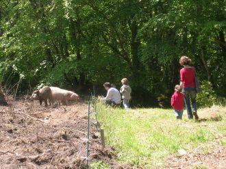 Visite libre de la ferme de Foreschou Le Vieux-Marché