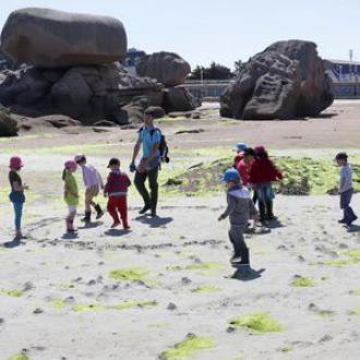 Sortie découverte des algues Trégastel