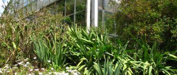 Conservatoire Botanique National