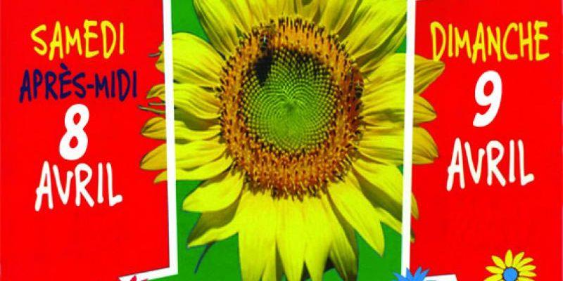 Marché aux Fleurs Arts et Nature