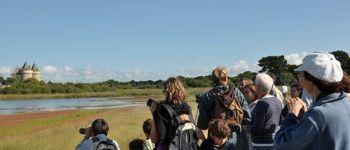 Balade Nature :  Oiseaux et Flore des Marais et dunes de Suscinio SARZEAU