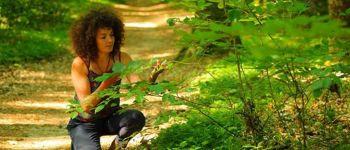 A la découverte des plantes sauvages comestibles et médicinales ST AVE