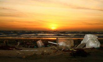 Océans et mers plastifiés, une bombe à retardement écologique - Conférence