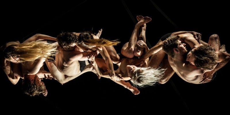 Circonova : répétition publique du spectacle Monstro