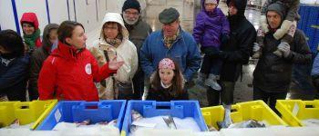« La marée du jour » : Le port de pêche de Keroman et sa criée Lorient