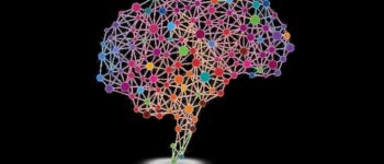 Conférence-spectacle : neurosciences et hypnose Saint-Nazaire