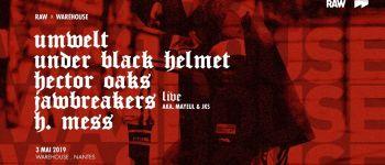 Techno. Umwelt, Under Black Helmet, Hector Oaks, Jawbreakers... Nantes