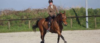 Equitation Hunter amateur-club et dressage club Brest