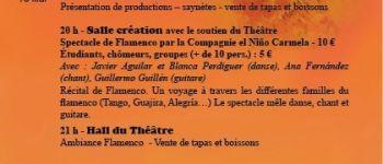 Ateliers de danse, festival de flamenco «¡ Fuego ! » Saint-Nazaire