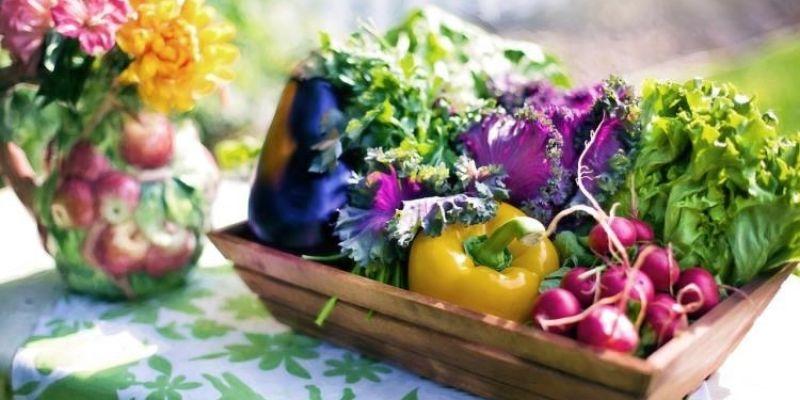 Cuisine au jardin