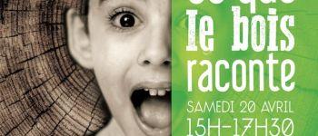 Atelier Rennes Ce que raconte le bois, 6 à 11 ans Rennes