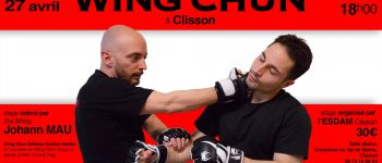 Stage de kung-fu Clisson