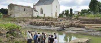 Sur les traces de la Loire antique : visite guidée Rezé