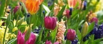 Concours de fleurissement Carquefou