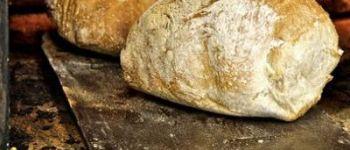 Fête du four à pain Le Croisic