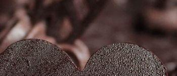 Marché du chocolat et des saveurs Le Croisic