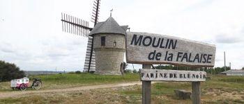 Balade nature Batz-sur-Mer