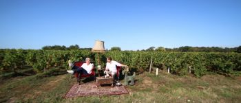 La vigne et le vin pour les nuls : Caves étonNantes Mouzillon