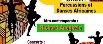Soirée africaine synzhoi fest Rennes