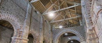 Visite commentée : site de l'Abbatiale Déas Saint-Philbert-de-Grand-Lieu