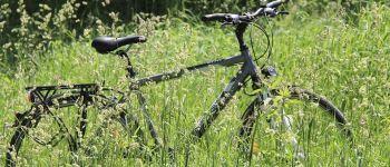 Un dimanche à vélo Guérande