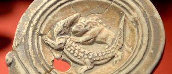 Des animaux au musée Rennes
