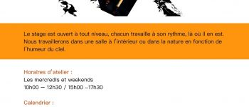 Calligraphie de mouvement (échauffement de danse et calligraphie) Nantes