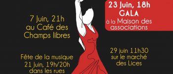 Flashmob flamenco Rennes