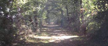 Randonnée pédestre Saint-Vincent-des-Landes