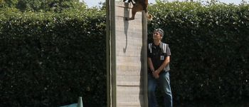 Concours Canin en ring Loctudy
