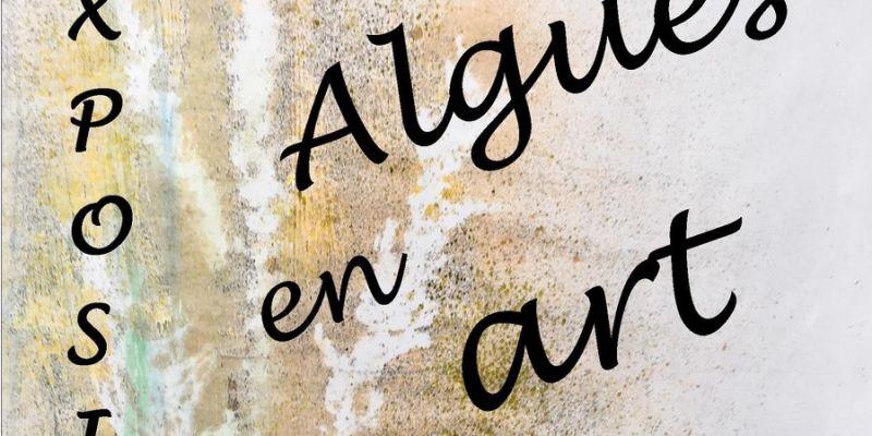 Algue Voyageuse-FestivAlg - Exposition