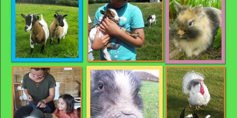 Visite Guidée à la ferme du Jardin Mod Kozh