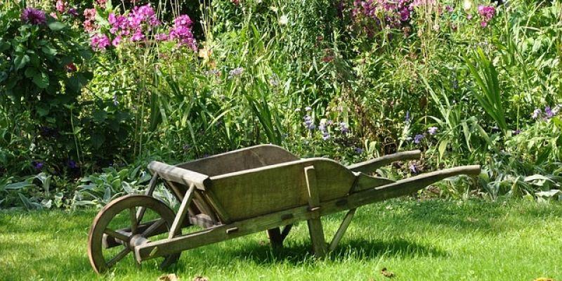 Vide-jardin - Fête des végétaux