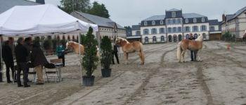Qualification chevaux de sports et de loisirs Lamballe-Armor