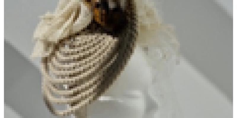 Art tout cour Plouescat :  3ème concours de créativité la Belle-Poule