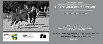 Exposition de photos \un cheval trait très breton\ Guingamp