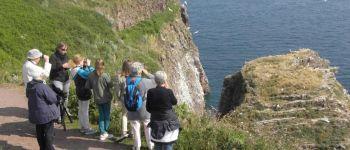 Visites focus sur le Cap Fréhel Plévenon