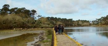 Balade art et nature Pont-LAbbé