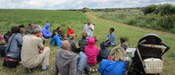 Balade contée sur le polder Combrit
