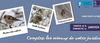 Comptage des oiseaux des jardins 2019 Iffendic
