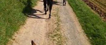 Randonnée équestre et pédestre Locmélar